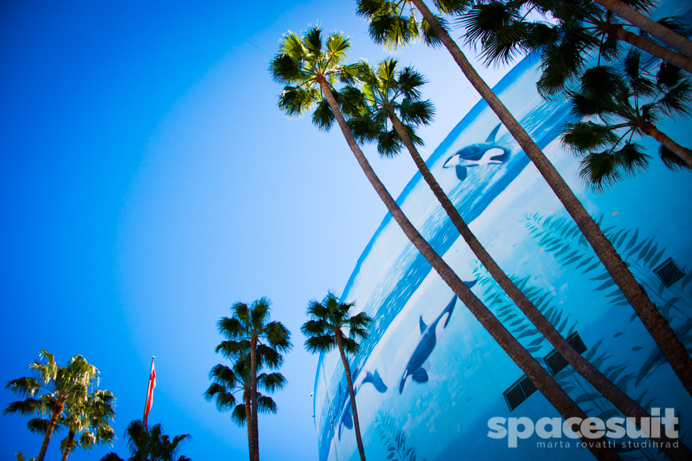 Spacesuit-Formula-E-Long-Beach-2016-season-2-Marta-Rovatti-Studihrad-_MGR8530